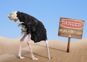 Ostrich Logic at OSHO Sammasati
