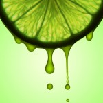 Squeeze the Juice of Life at OSHO Sammasati - living fully