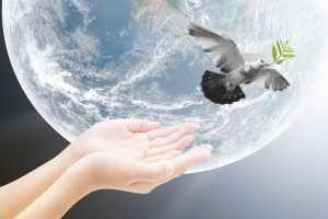 globe of world, hands, dove