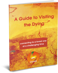 Guide to Visiting the Dying