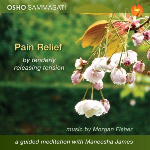 Pain relief guided meditation